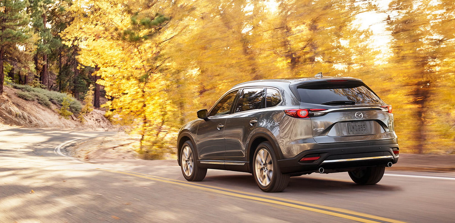Valley Chevy - 2017 Mazda CX-9 in Gray